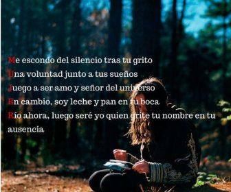 Poemas para chicas