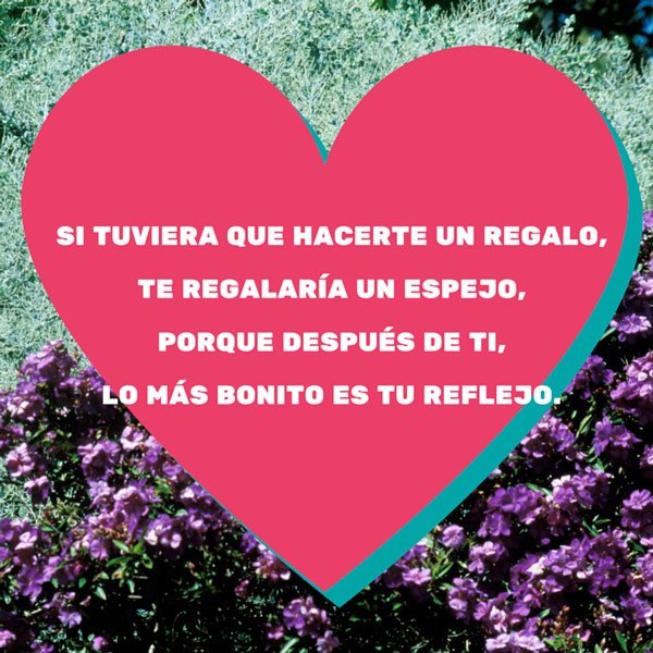 Versos amor
