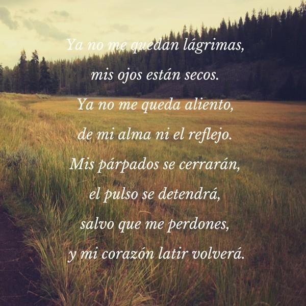 Poema para perdonar