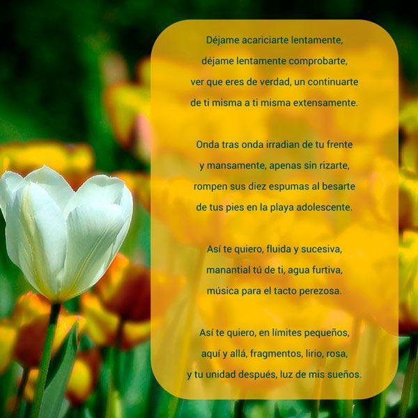 Poemas para recitarlos a gente
