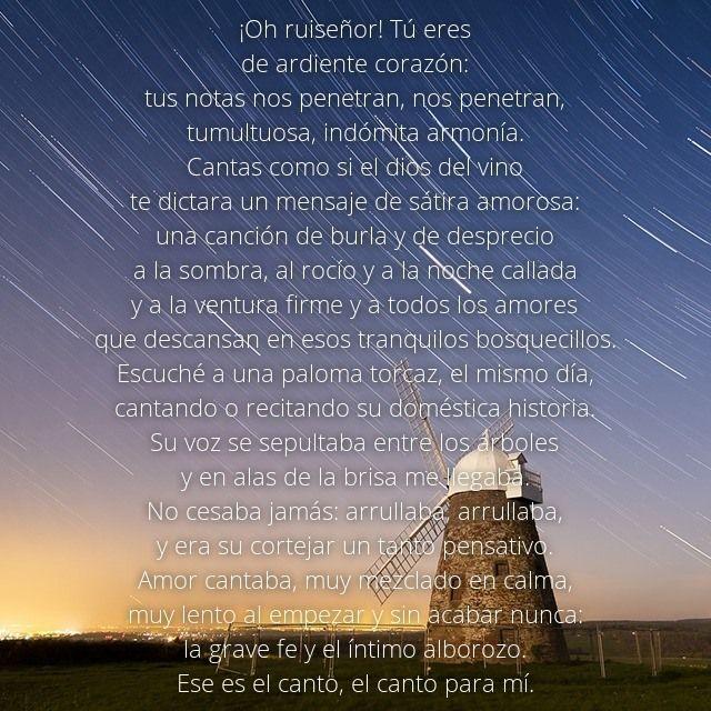 Bonitos versos para san valentin