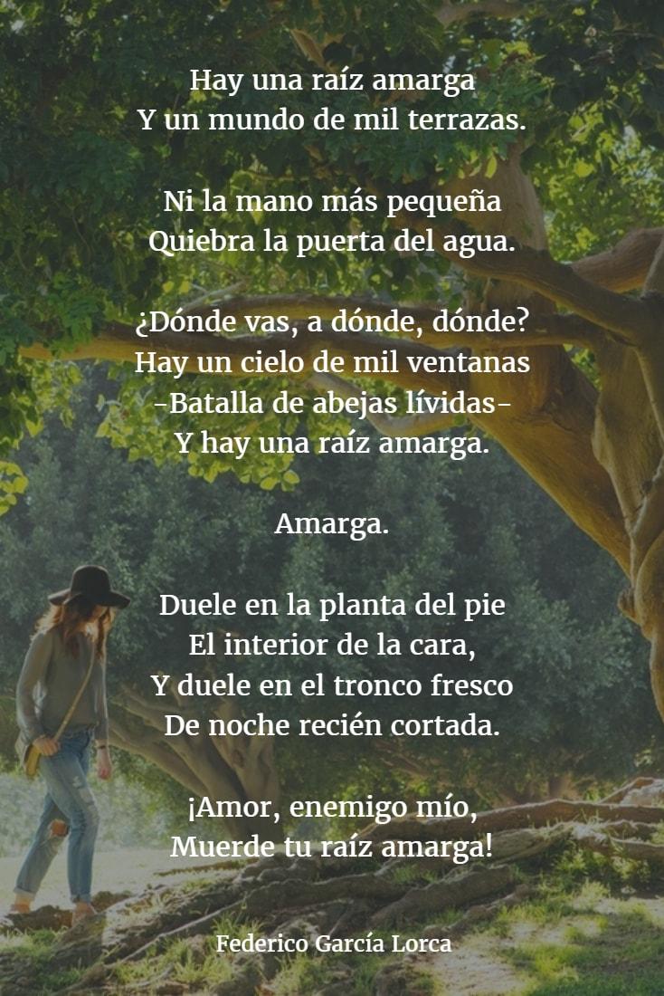Poemas de federico garcia lorca 3