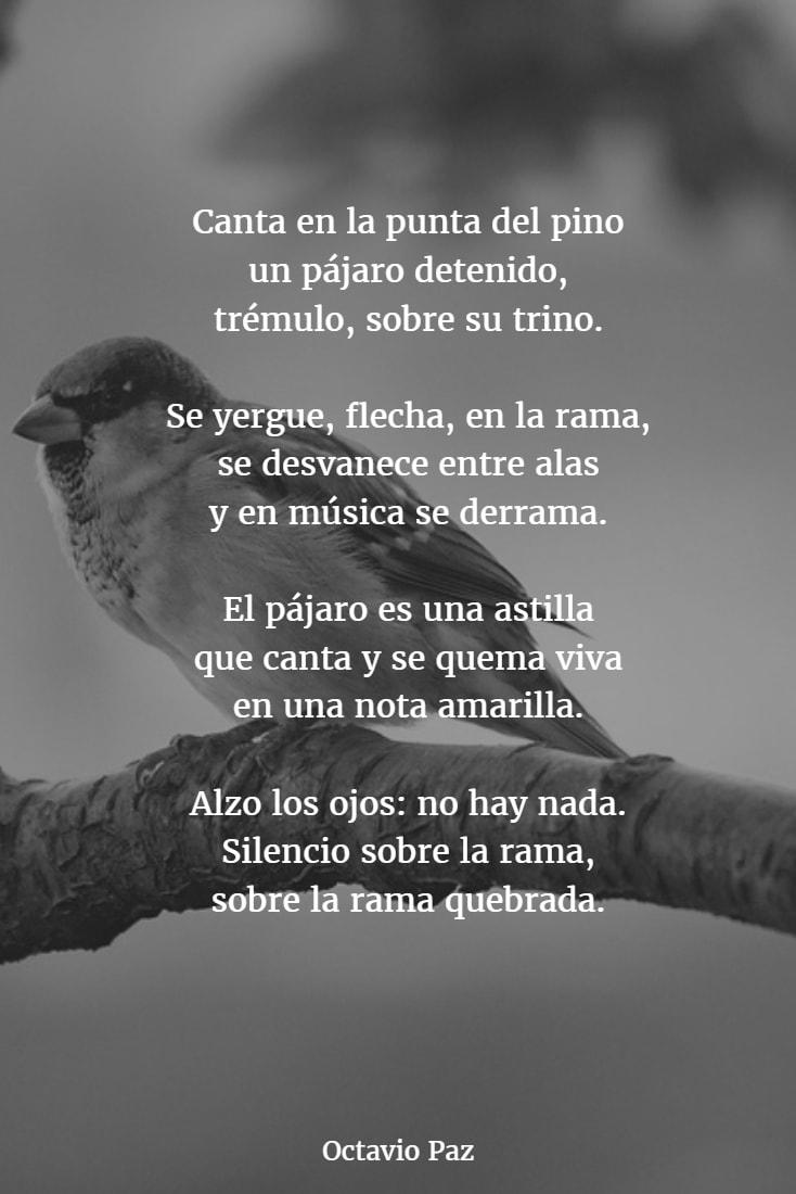 Poemas de octavio paz 1