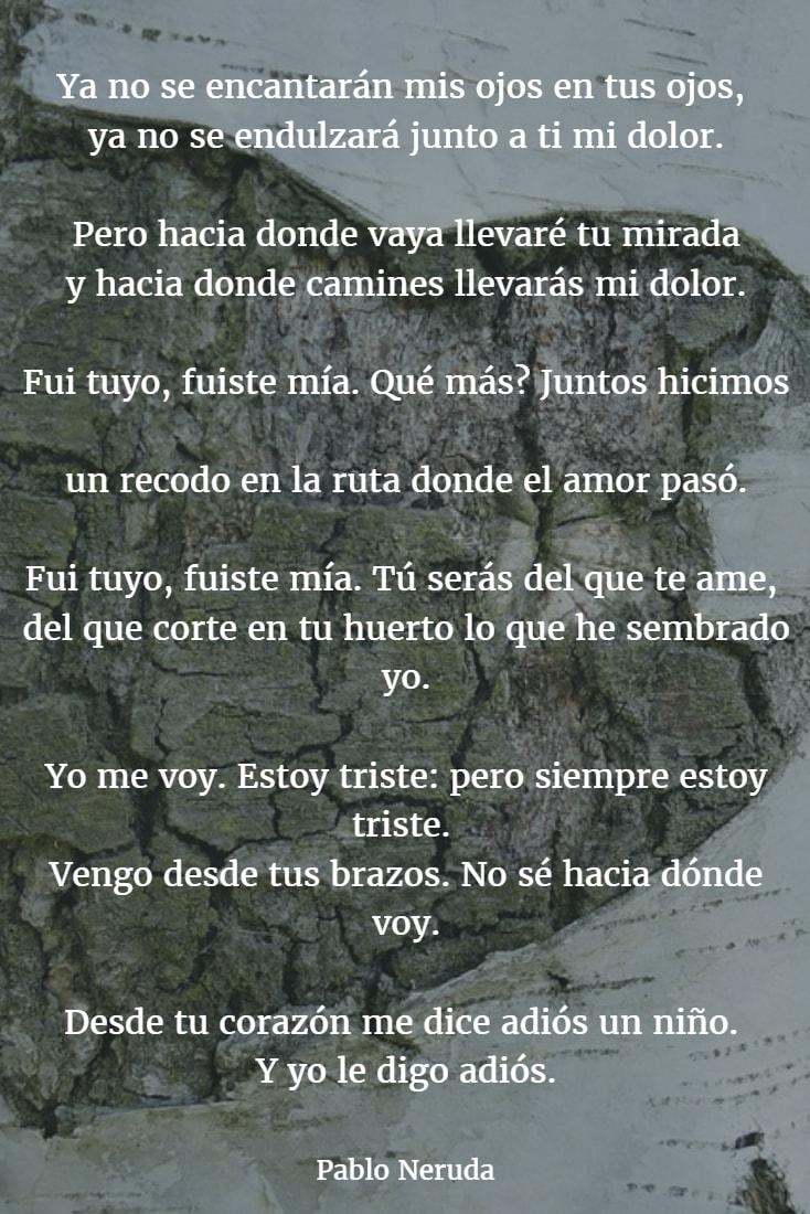 Los Mejores Poemas De Pablo Neruda Versos