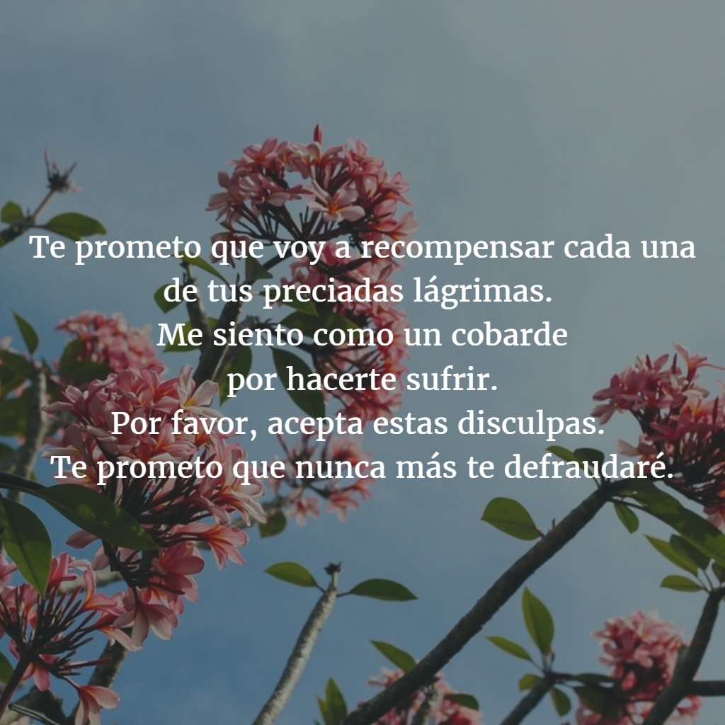 Poemas para pedir perdon 5