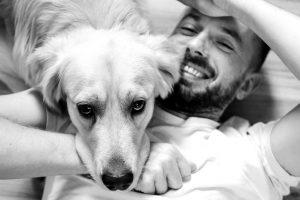 Frases para perros